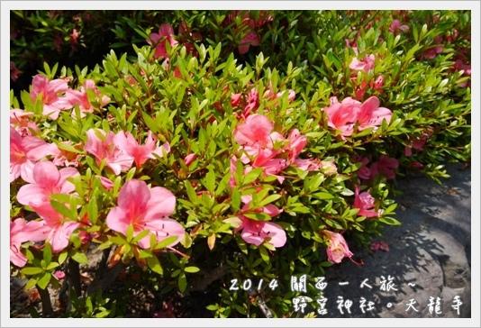 Arashiyama23.JPG