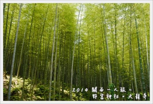 Arashiyama24.JPG