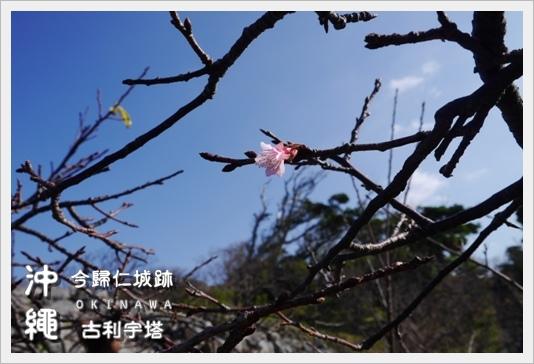 Castle_Tower10.JPG