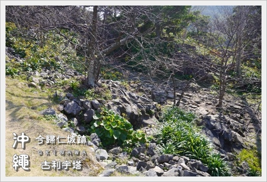 Castle_Tower11.JPG