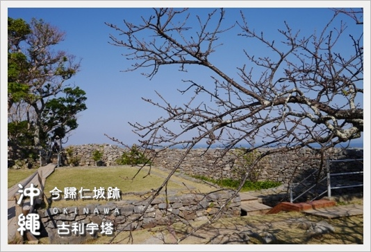 Castle_Tower13.JPG
