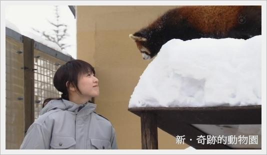 kiseki20154.jpg