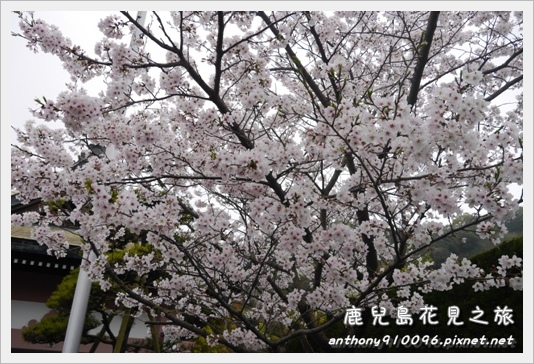 Kagoshima08.JPG