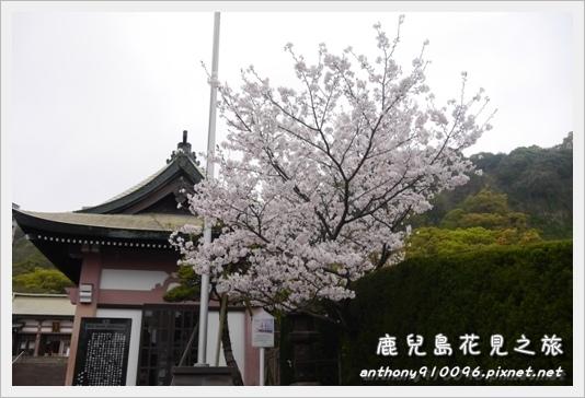 Kagoshima09.JPG