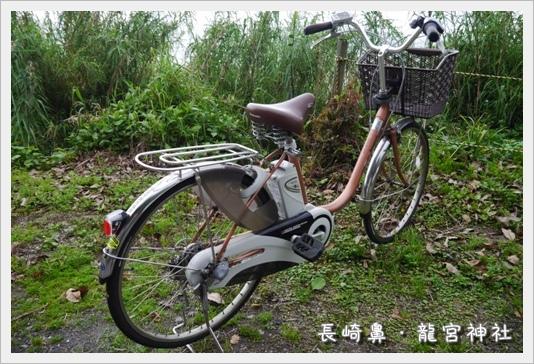 Nagasakibana02.JPG