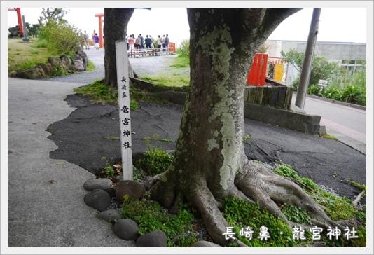 Nagasakibana06.JPG