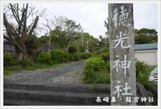 Nagasakibana27.JPG