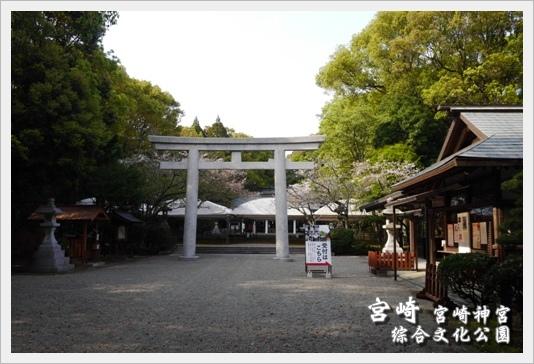 MiyazakiSkura13.JPG