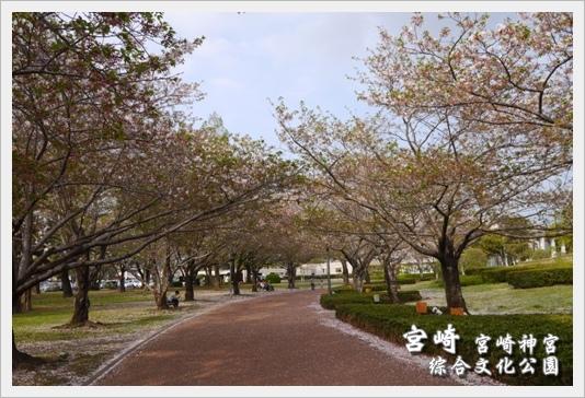 MiyazakiSkura23.JPG