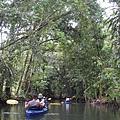 獨木舟初體驗
