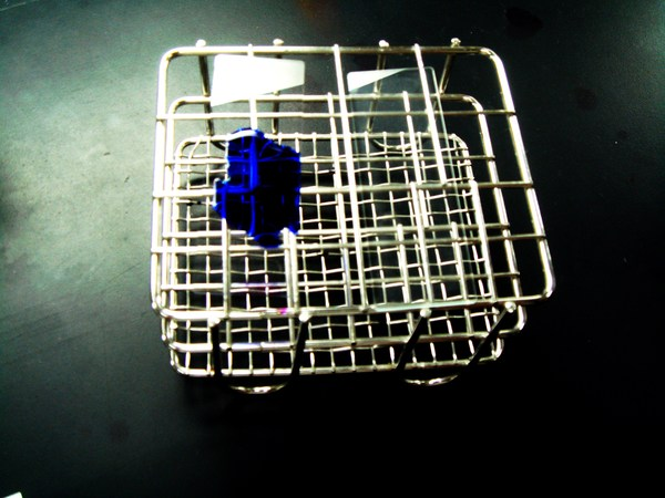 實驗27 - 芽孢形成桿菌之孢子染色