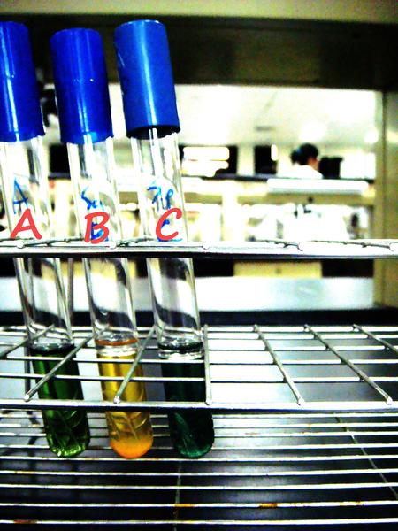 實驗17 - 葡萄球菌
