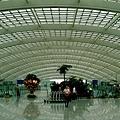 北京 - 首都機場大廳