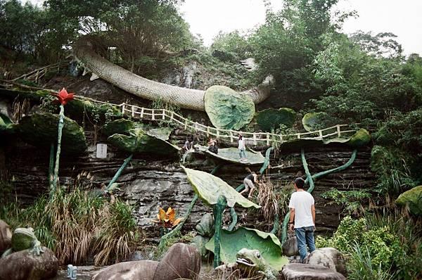 巨大的廢棄蓮花池