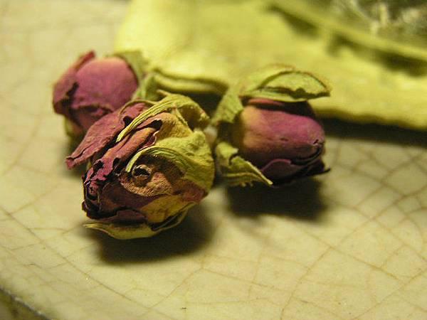 和田玫瑰.JPG