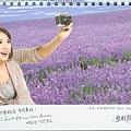 2007年華航桌曆-8.jpg