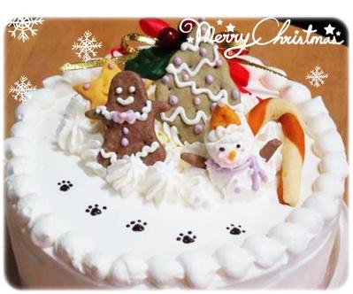 安安聖誕蛋糕.jpg