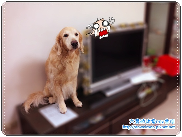 Photo 2012-03-23 20-40-50
