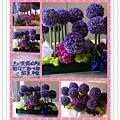 PhotoGrid_1339436296342