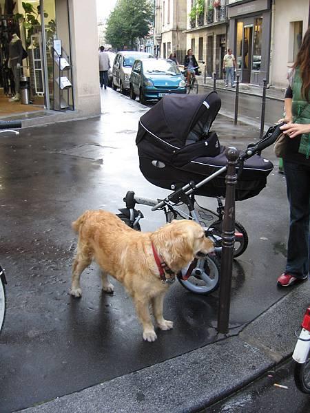 好好看的嬰兒推車