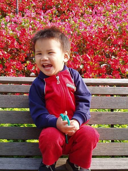 兩歲的青青