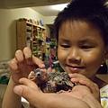 剛帶回來的鸚鵡好像小恐龍!