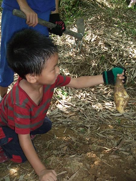 2008.7.11石碇山上採綠竹筍 (28).jpg