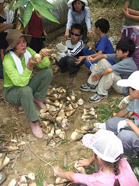 老師跟大家講解怎麼看好吃的竹筍