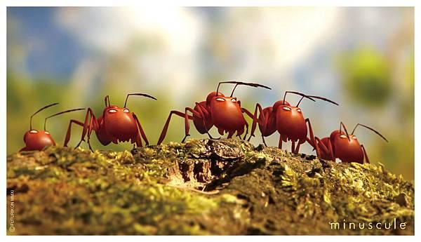 昆蟲life秀2-1