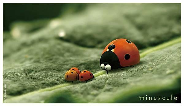 昆蟲life秀2-2