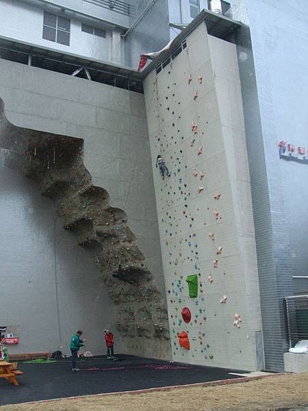 2009.1.5內湖運動中心攀岩 (27).jpg