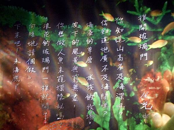 2009.1.26-2.1墾丁白砂露營 (334).jpg