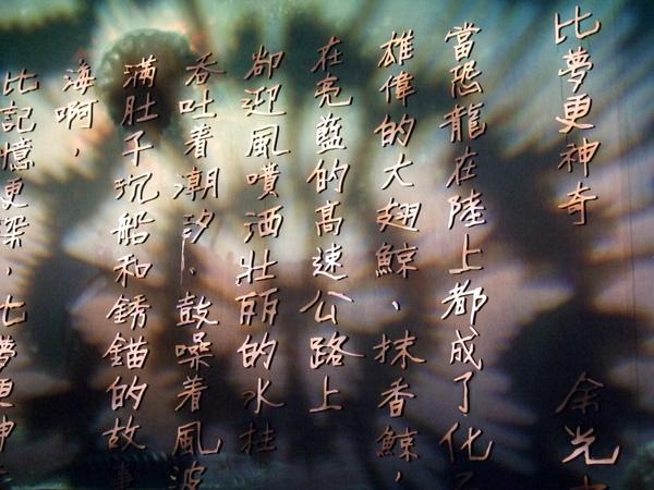 2009.1.26-2.1墾丁白砂露營 (335).jpg