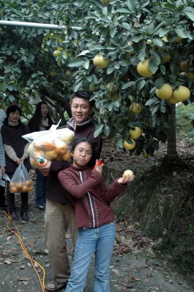 20091205嘉義竹崎星光森林 (453).JPG