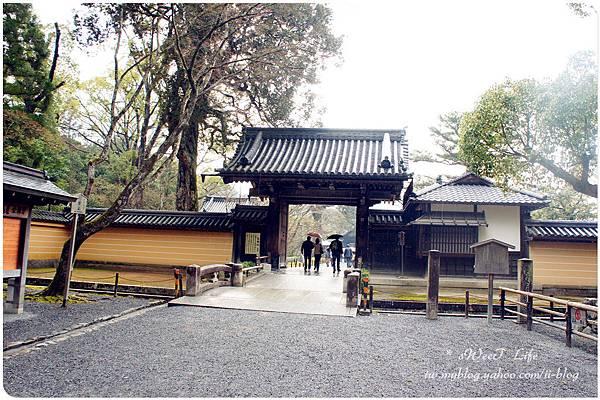 京都-金閣寺 (4).JPG