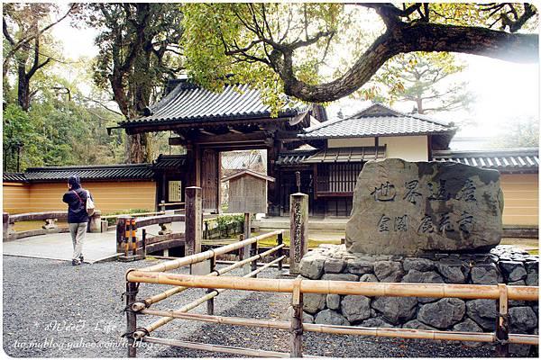 京都-金閣寺 (5).JPG