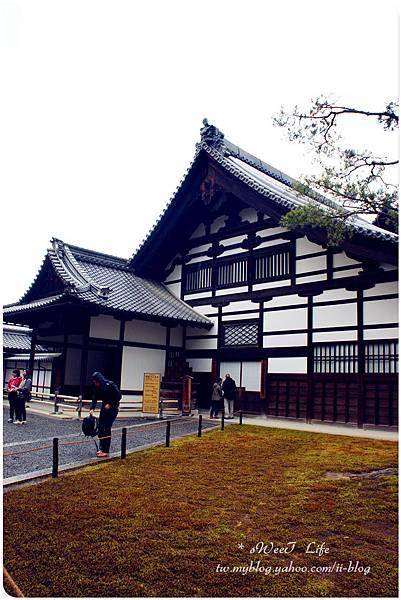 京都-金閣寺 (6).JPG