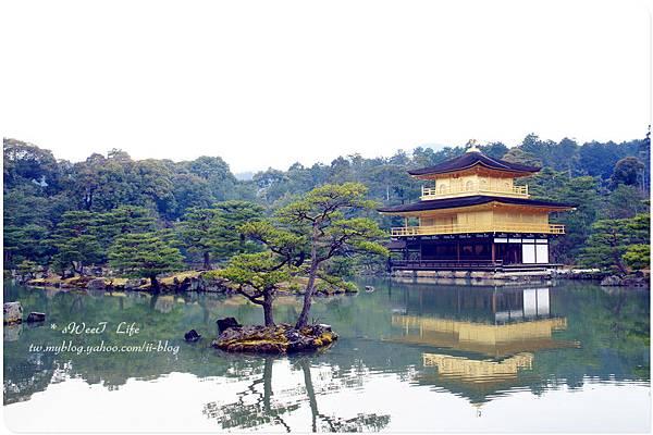 京都-金閣寺 (11).JPG
