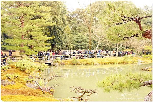 京都-金閣寺 (20).JPG