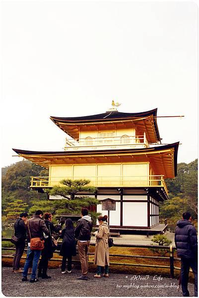 京都-金閣寺 (24).JPG