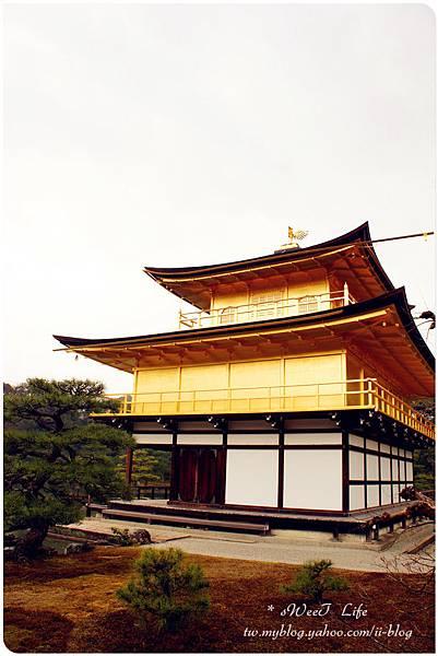 京都-金閣寺 (25).JPG