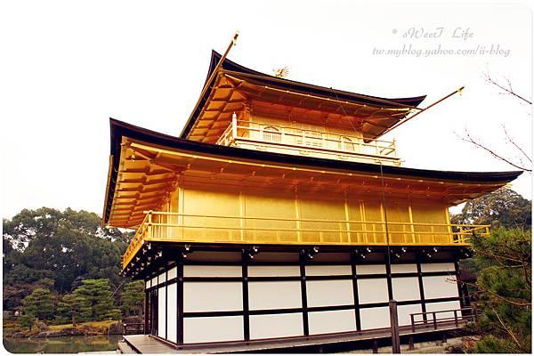 京都-金閣寺 (27).JPG