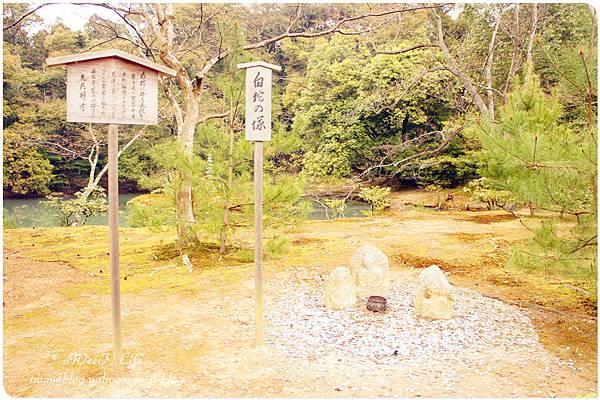 京都-金閣寺 (32).JPG