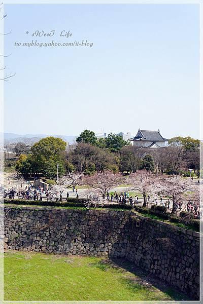 大阪城 (16).JPG
