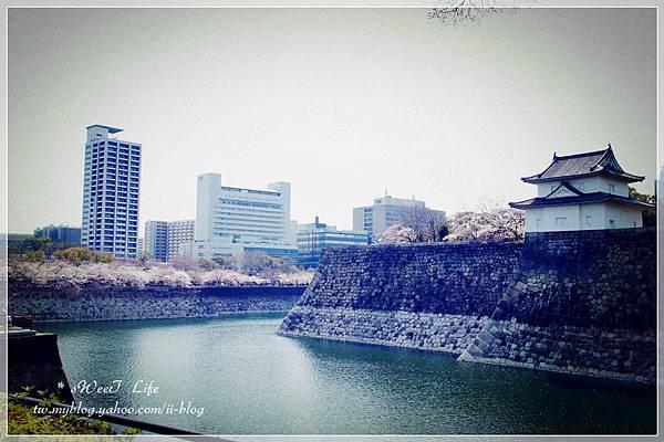 大阪城 (24).JPG