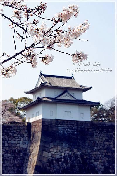 大阪城 (27).JPG