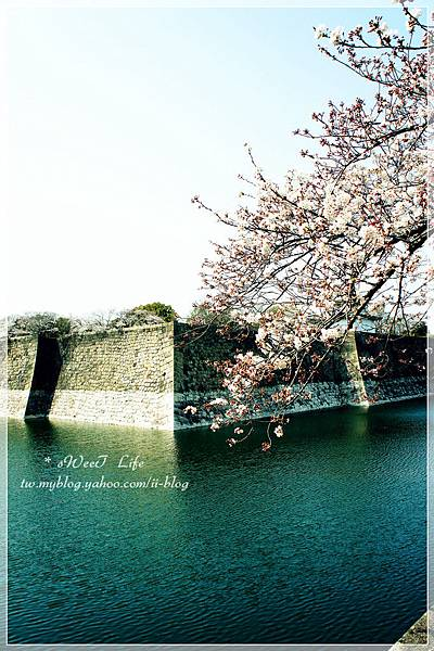 大阪城 (32).JPG