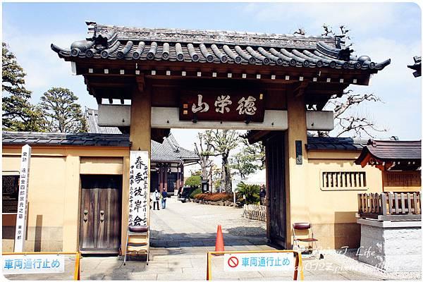 巢鴨本妙寺 (1).JPG