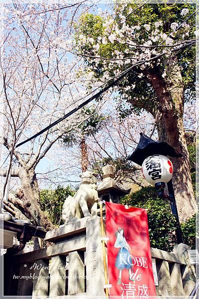 神戶-北野異人館 (14).JPG