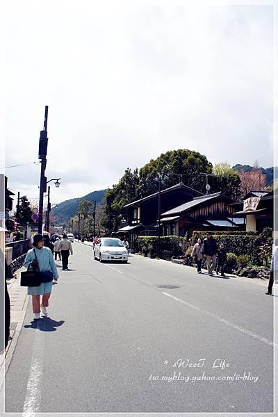 京都-嵐山 (7).JPG